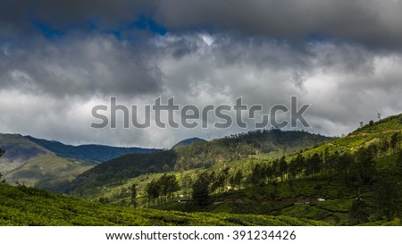 Wide view of Munnar valley with lush green tea plantations and dark clouds, Kerala, India