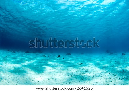 Wide view underwater with sand and surface. Bonaire