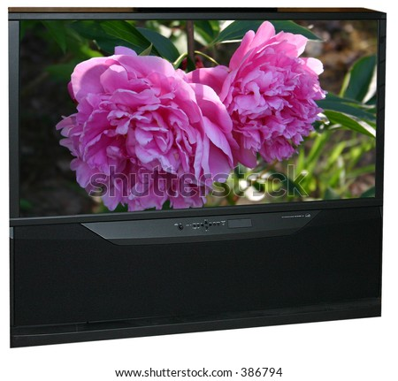 widescreen tv with flowers - stock photo