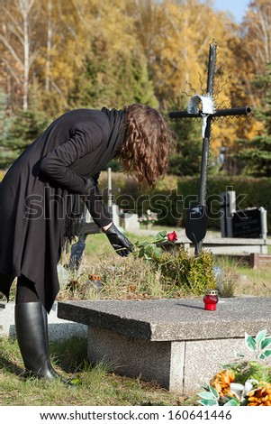 Widow in black putting red rose on grave - stock photo