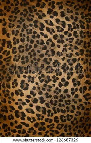 Wild animal skin pattern - material - stock photo