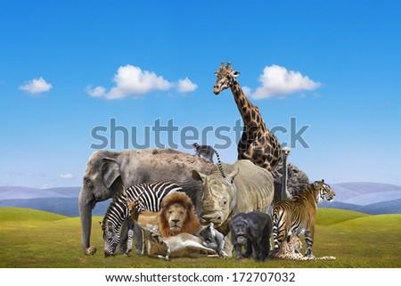 Wild animals group - stock photo