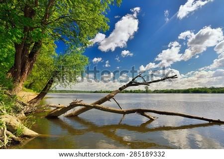 Wild bank of the river Vistula in Poland. - stock photo