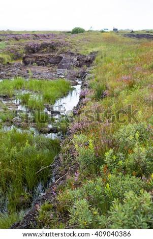 wild bogland landscape in county kerry on the wild atlantic way of ireland - stock photo