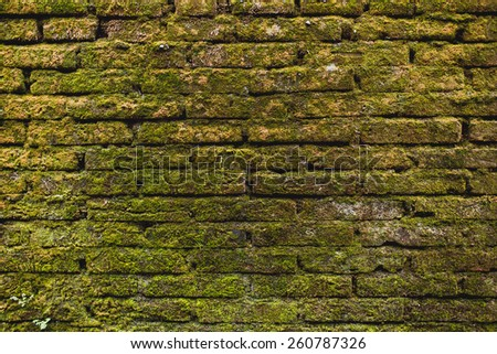 Wild brick wall with green moss grass on it. Brickwork - stock photo