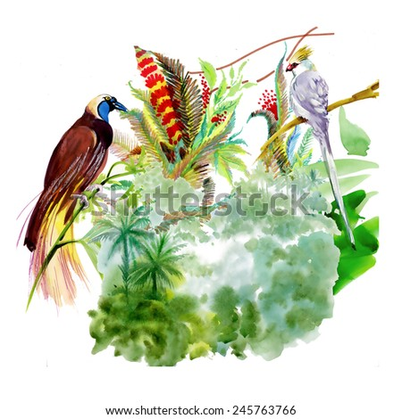 Wild exotic birds on the branch with flowers on tropical white  background