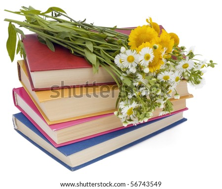 Wild flowers and old books. The wisdom concept. Isolated on white. - stock photo