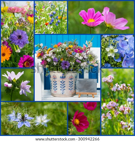 Wild flowers collage
