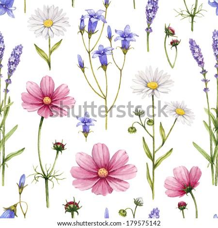 Wild flowers illustration. Watercolor seamless pattern - stock photo
