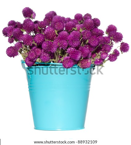 wild flowers in bucket isolated on white background - stock photo