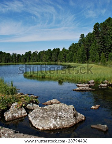Wild forest, river and Karacol lake, Altai, Russia - stock photo