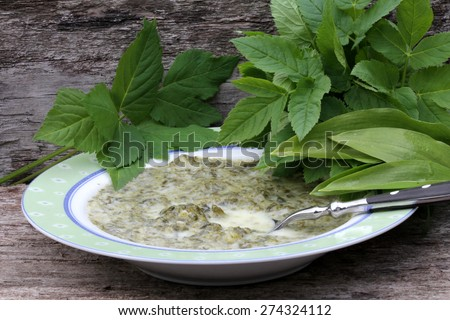 wild herbs  - stock photo