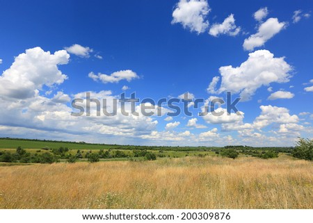 wild meadow in steppe under nice summer sky - stock photo