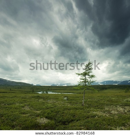 wild nature with storm clouds