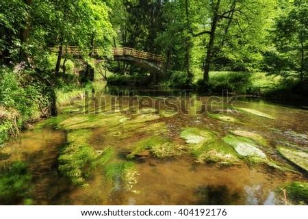 Wild River Kamenice flowing between rocks in the Czech Switzerland - stock photo