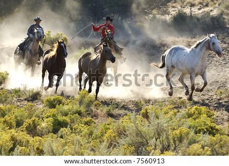 Wild Wild West - stock photo