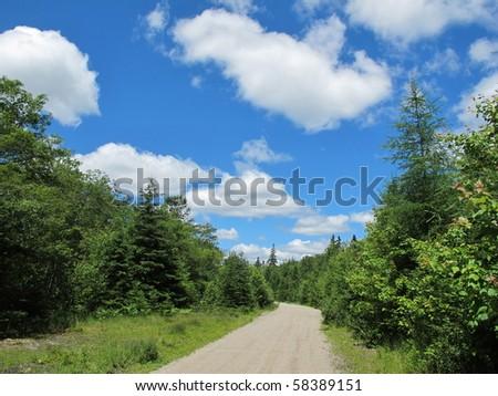 Wilderness trail in Nova Scotia. Old train line. - stock photo
