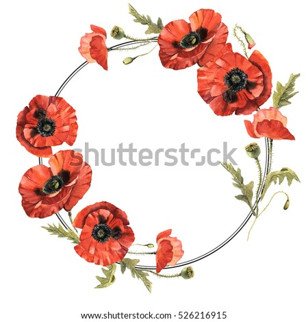 Wildflower poppy flower wreath watercolor style stock illustration wildflower poppy flower wreath in a watercolor style isolated full name of the plant mightylinksfo