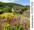 Wildflowers and cottages on the beach at Porlock Weir, Somerset England UK - stock photo