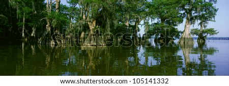 Wildlife Refuge at Lake Fausse Pointe State Park, Louisiana - stock photo