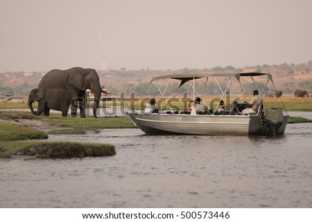 Wildlife watching on the Chobe River, Chobe National Park