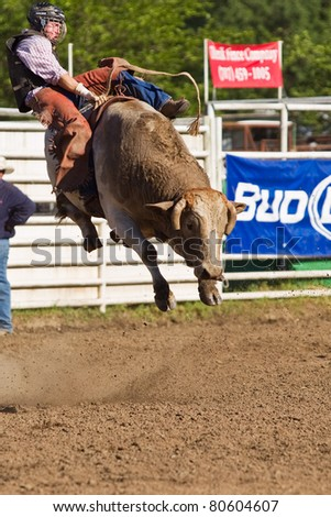 WILLITS, CA - JULY 4: Another rodeo bareback bull rider trying to stay on a twisting bull at the Willits Frontier Days, California's oldest continuous rodeo, held July 4, 2011 in Willits, CA. - stock photo