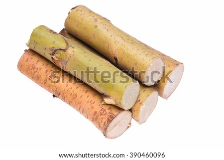 Willow logs isolated on a white background
