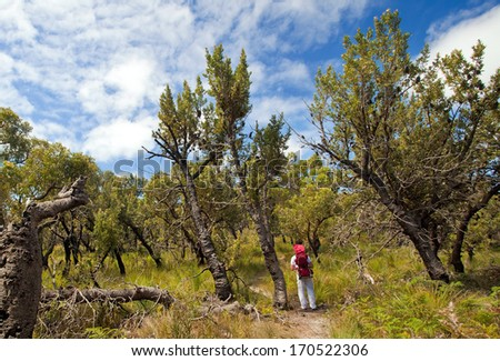 Wilsons Promontory National Park, Victoria, Australia - stock photo