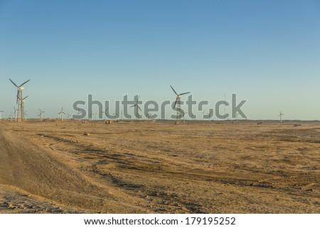 Wind farm in Egypt - stock photo