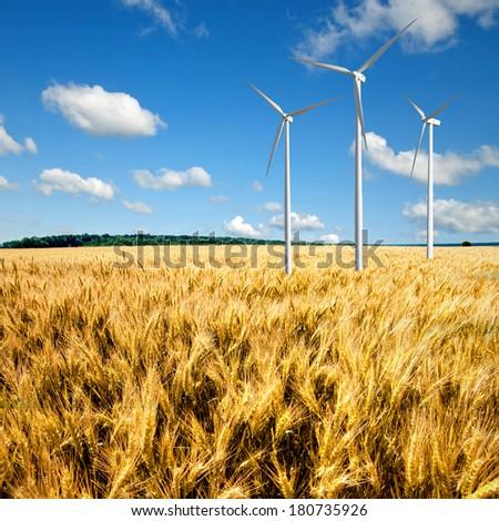 Wind generators turbines on wheat field - stock photo