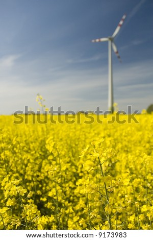 Wind generators with rapeseed fields. - stock photo