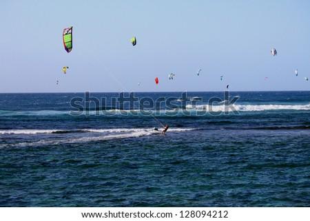 wind kite surfers in hawaii - stock photo