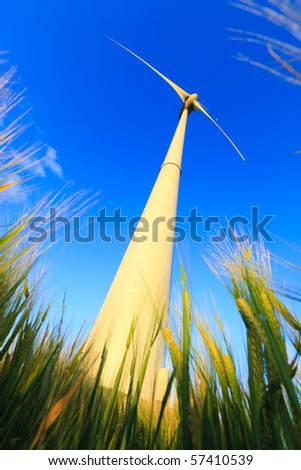 wind turbine in a field of wheat in summer with a blue sky - stock photo