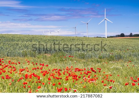 Wind turbine on Bornholm island with red poppy flowers in a foreground, Hasle, Denmark, Scandinavia - stock photo