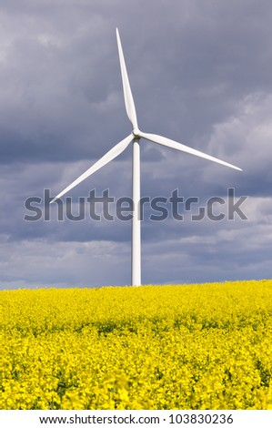 Wind turbine with rapeseed / Duel green energy from wind power and biofuel - stock photo