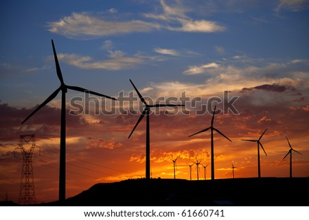 Wind turbines at a summer sunset