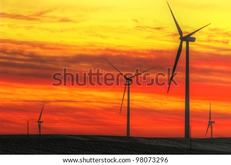 Wind turbines field at sunset