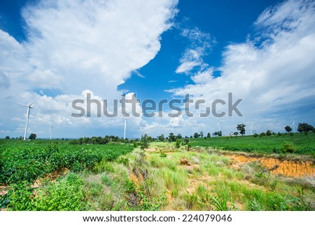 Wind turbines generated electricity in the natural park - stock photo