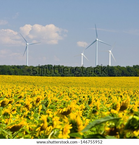Wind turbines generating electricity  - stock photo