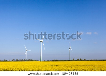 Wind turbines in a field of rapeseed plants. - stock photo