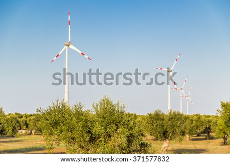 wind turbines  in cultivation of olive trees in Apulia in Southern Italy