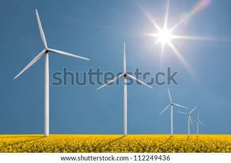 Wind turbines on a bright sunny day in a field with cole seed used for fuel production - stock photo