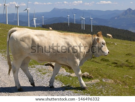 wind turbines with calf - stock photo