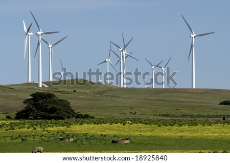 Windfarm in field, Victoria, Australia - stock photo