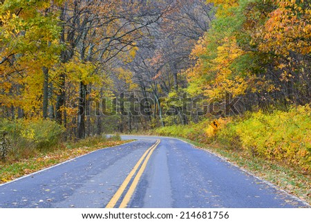Winding asphalt road with autumn foliage - Shenandoah National Park, Virginia United States  - stock photo