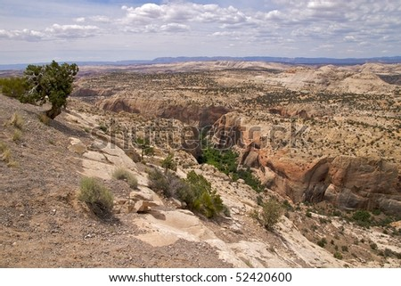 Winding canyon, Aquarius Plateau, Grand Staircase Escalante National Monument, along National Scenic Byway 12, Utah
