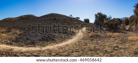 Winding dirt path leads through rolling hills of southern California wildfire burn zone.