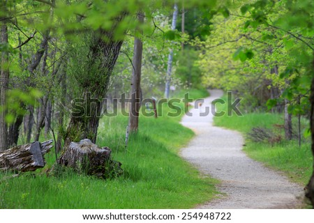 Winding path in the nature park  - stock photo