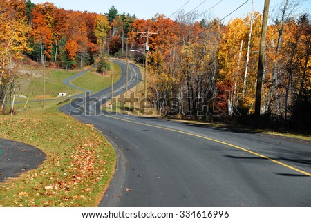 winding road in autumn woods