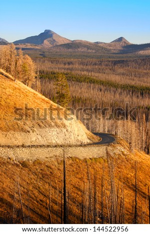 Winding road in Yellowstone national park - stock photo